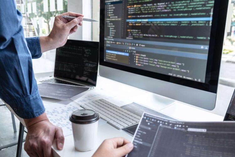 Standard vs Enterprise Software Development – Which One is the Best?